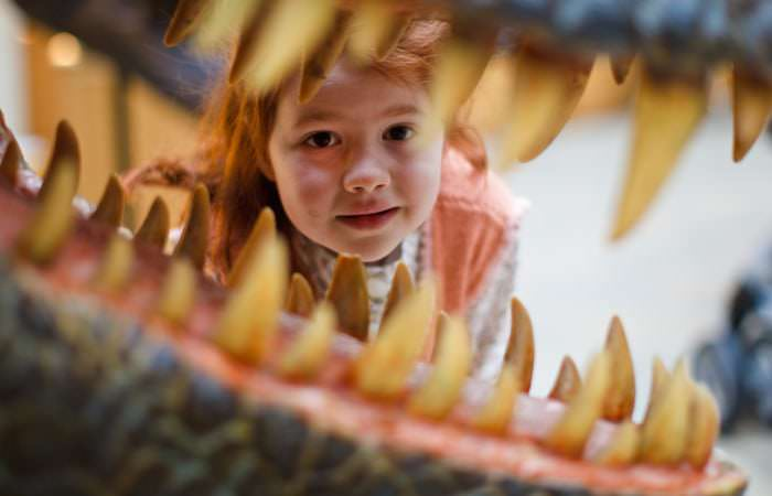 Children Photographed at The Natural History Museum Oxford 1