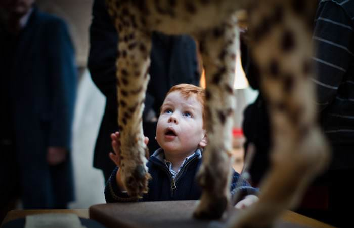 Portrait Photographs at The Natural History Museum in Oxford 2