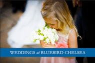 Front Bluebird Wedding brochure - Photograph by Douglas Fry of Bridesmaid